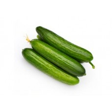 Organic Small Lebanese Cucumber
